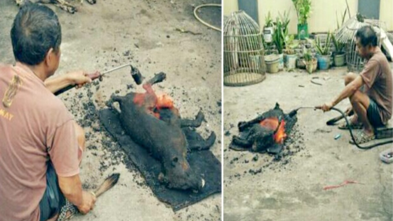 Punish man that cooks dogs alive and posts photos online!