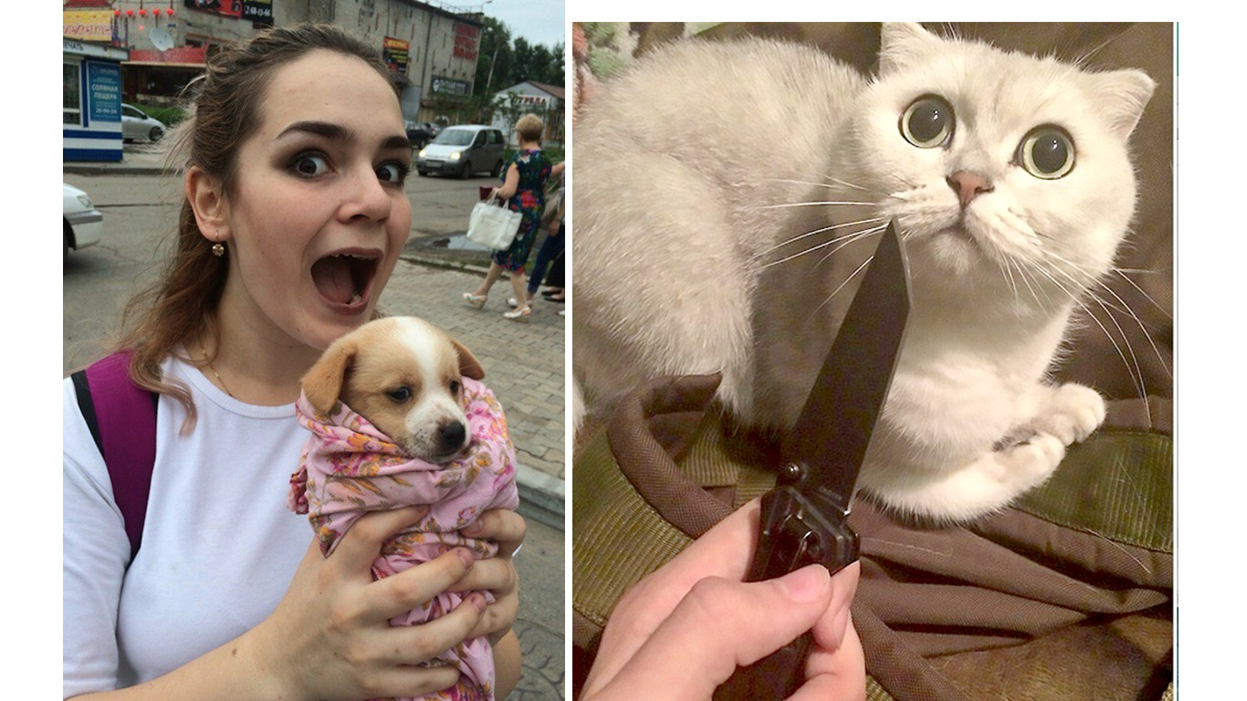 Punish girls that attacked cat with knife and ripped puppy's heart out!