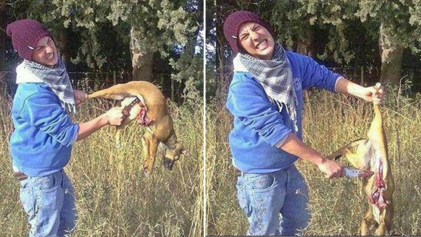 Punish schoolboy that cut puppy in half with knife and posed for photos!