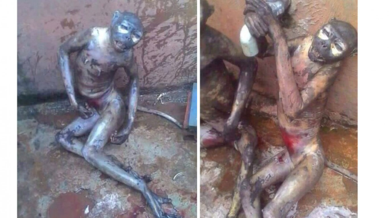 Justice for monkeys set on fire and left to die in tremendous pain!