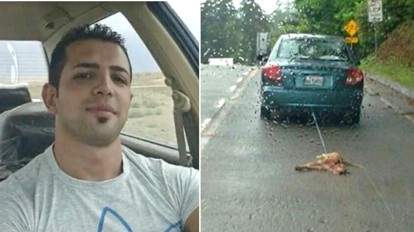 Justice for dog dragged behind car for miles by cruel man!