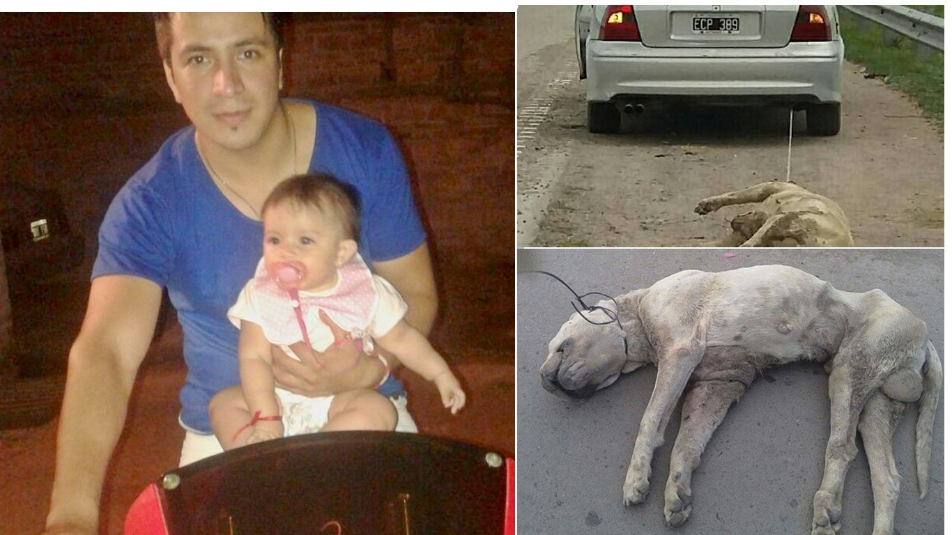 Prosecute father that dragged pet dog behind car for miles in front of daughter!